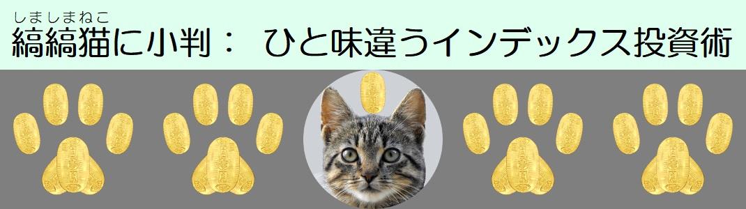 縞縞猫に小判: ひと味違うインデックス投資術